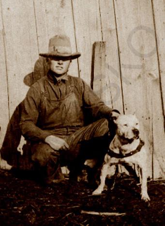 Lamasko X-Pert Kennels - American Staffordshire Terrier